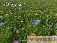 cheap HQ Grass 1 for 3ds Max